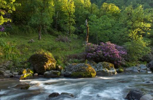 Национальный парк Мтирала - это одно из самых живописных мест Аджарии