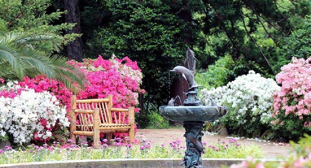 The Botanical Garden in Batumi